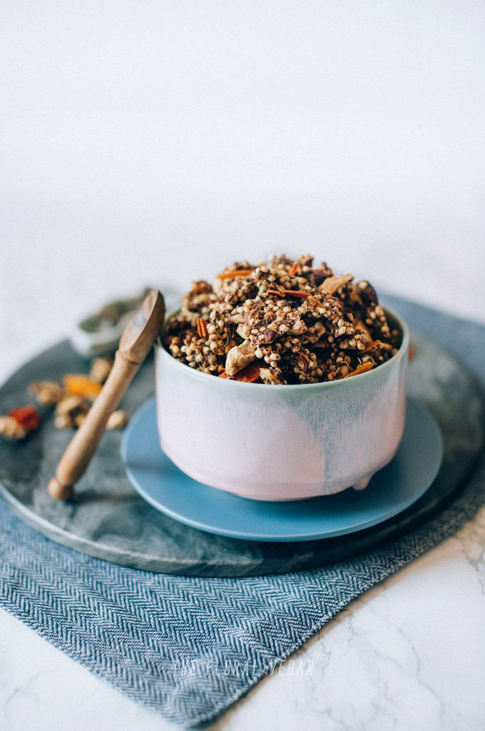 Pumpkin pie sprouted granola